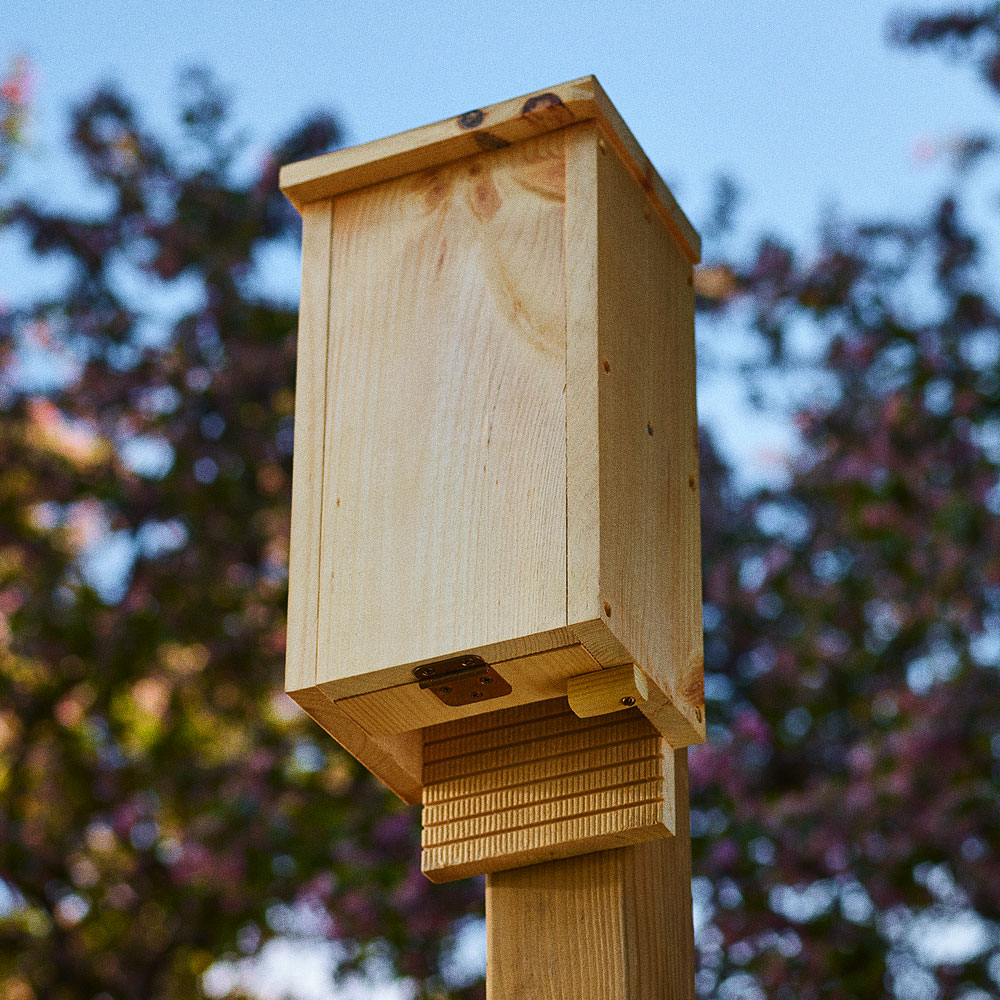 How To Build A Bat House Lee Valley Tools