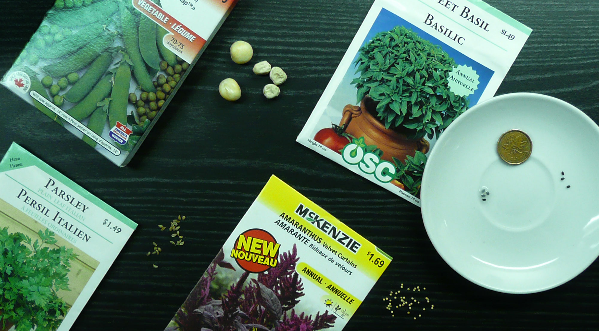A selection of seeds