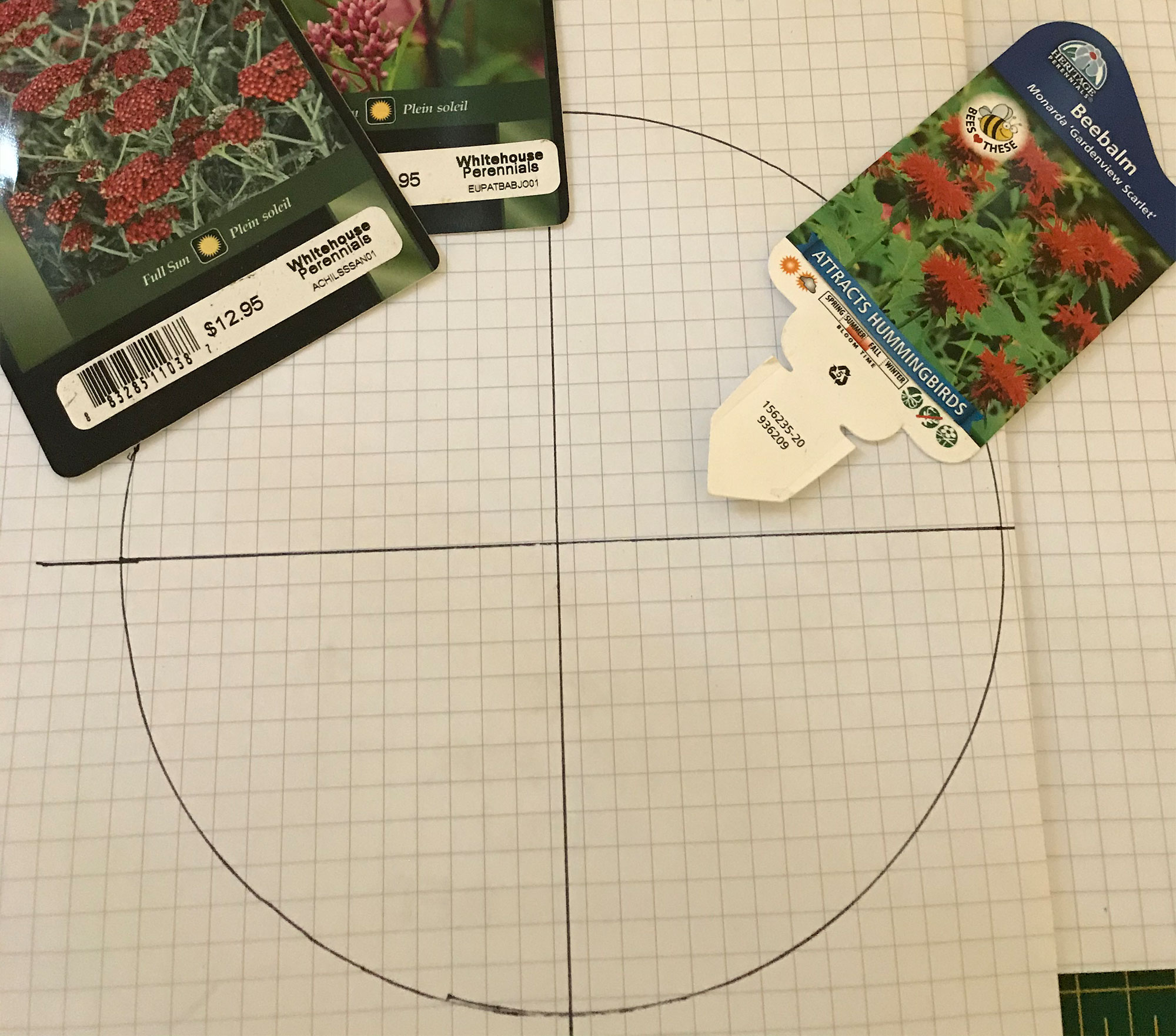 Plant labels on graph paper.