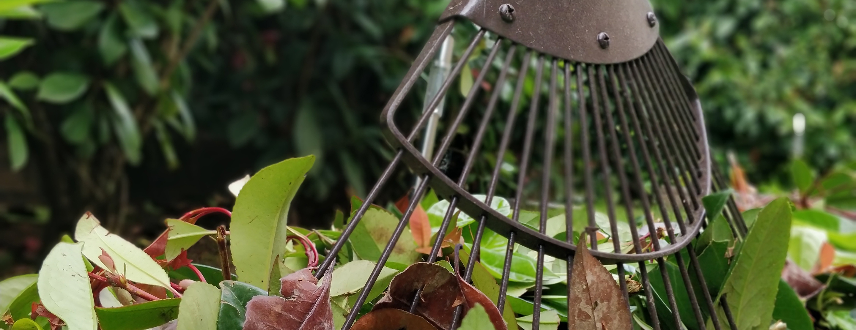 Jardinage. À partir des semis jusqu'à la mise en conserve de vos récoltes, nous répondons à vos besoins de jardinier en toute saison.
