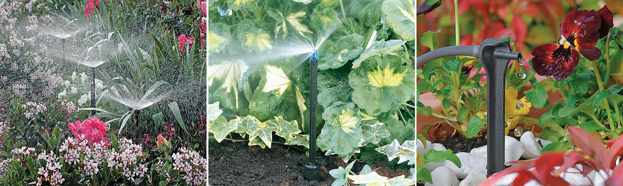 Irrigation goutte à goutte : Planifier et installer un système d'irrigation